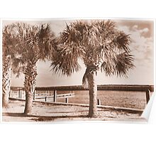 Kissimmee Boat Dock Poster
