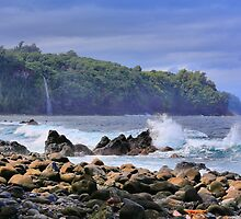 Laupahoehoe Point by DJ Florek