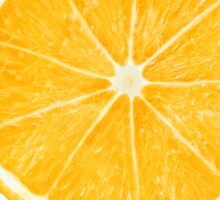 Colorful citrus fruits slices Sticker