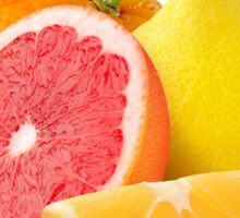 Citrus fruits Sticker