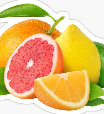 Citrus fruits Sticker