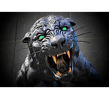 Panther Power! Photographic Print