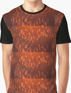Phragmites in Golden Hour Graphic T-Shirt