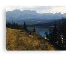 Jasper, Canada Canvas Print
