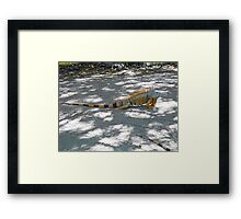 ©NS Orange Vanity And Stripes IA. Framed Print