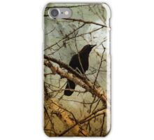 CROW WITH FULL MOON iPhone Case/Skin