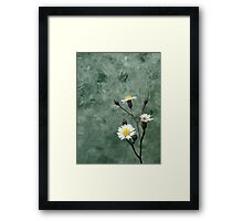 ©NS White Winter Bloom IIIA. Framed Print
