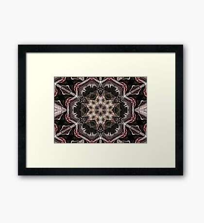 The Zen mind Framed Print