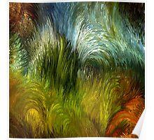 Scrub vegetation by rafi talby Poster