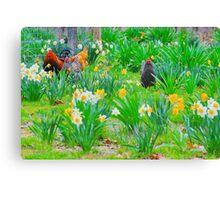 Arkansas Spring Canvas Print