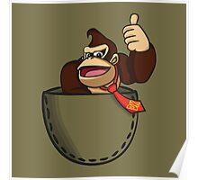 Pocket DK Poster