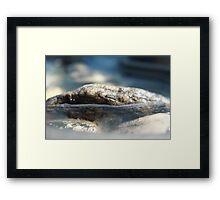 Rocks Framed Print
