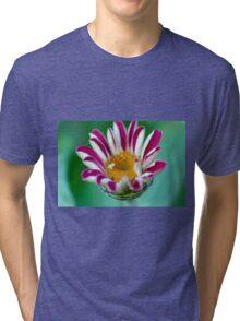 Striped Beauty 1 Tri-blend T-Shirt