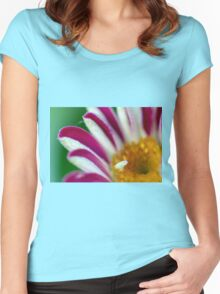 Striped Beauty 2 Women's Fitted Scoop T-Shirt