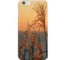 Winter Morning Light - Lyme Regis iPhone Case/Skin