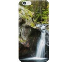 Falls in the Forest iPhone Case/Skin