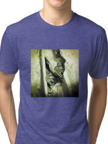 Gulf Coast Toad Tri-blend T-Shirt