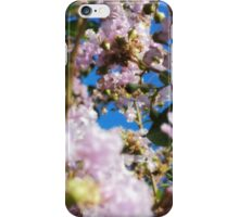 Pink Flower Blossoms iPhone Case/Skin