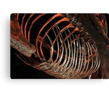 Houston Museum of Natural Science Canvas Print