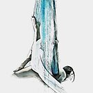 Web - Aerial Dancer by Galen Valle