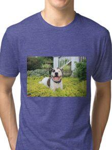 Pit Bull T-Bone Tri-blend T-Shirt