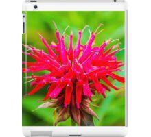 Bee Balm - Red iPad Case/Skin