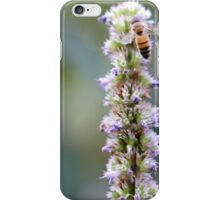 Busy Bee with Purple Flowers 1 iPhone Case/Skin