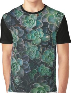 Succulent Plants Nature Fine Art Photography 0038 Graphic T-Shirt
