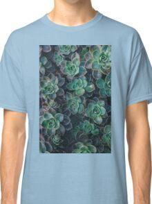 Succulent Plants Nature Fine Art Photography 0038 Classic T-Shirt