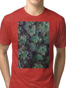 Succulent Plants Nature Fine Art Photography 0038 Tri-blend T-Shirt