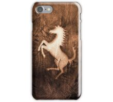 The Wild Horse iPhone Case/Skin