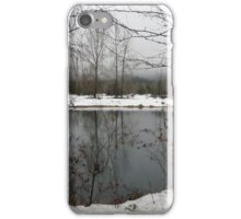 Cold and Quiet iPhone Case/Skin