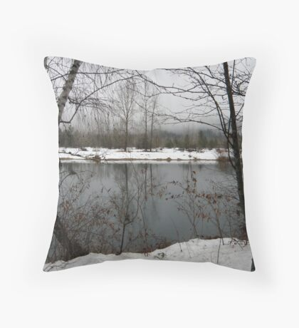 Cold and Quiet Throw Pillow