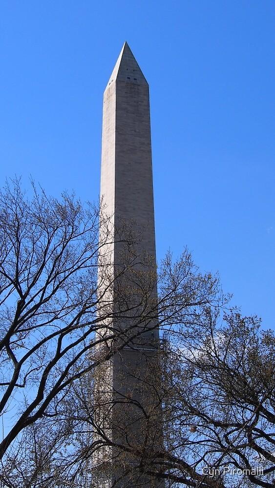 Washington Monument by Cyn Piromalli
