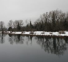 Winter On The River by Patty Boyte