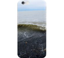Dungeness Spit iPhone Case/Skin
