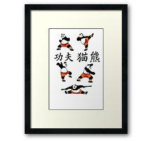 Kung-Fu Panda (Colour) Framed Print