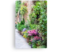 Flower-Lined Street Canvas Print