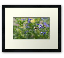 World of Colours Framed Print
