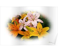 Spring Lilies ~ Ready for Planting Poster