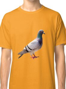 Pigeon funny design Classic T-Shirt
