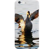 about to land iPhone Case/Skin