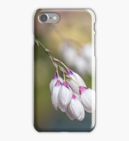 White macro flowers iPhone Case/Skin