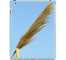 flowering Reed growing on the a River blue sky background iPad Case/Skin