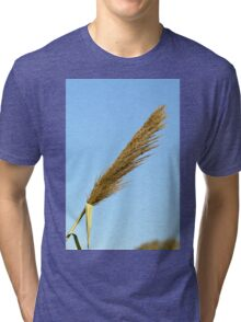 flowering Reed growing on the a River blue sky background Tri-blend T-Shirt
