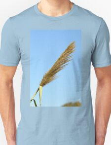 flowering Reed growing on the a River blue sky background T-Shirt