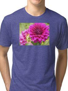 Dahlia Macro Tri-blend T-Shirt