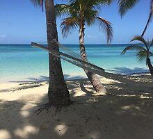 Plantation island  by Vella97
