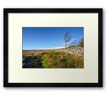 Whernside Tree Framed Print