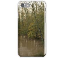 Derwent Flood iPhone Case/Skin